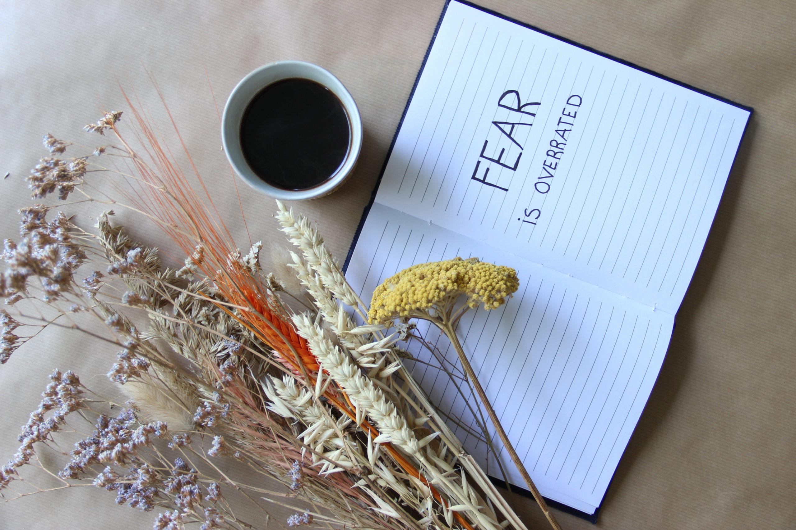 FIO_Blog2